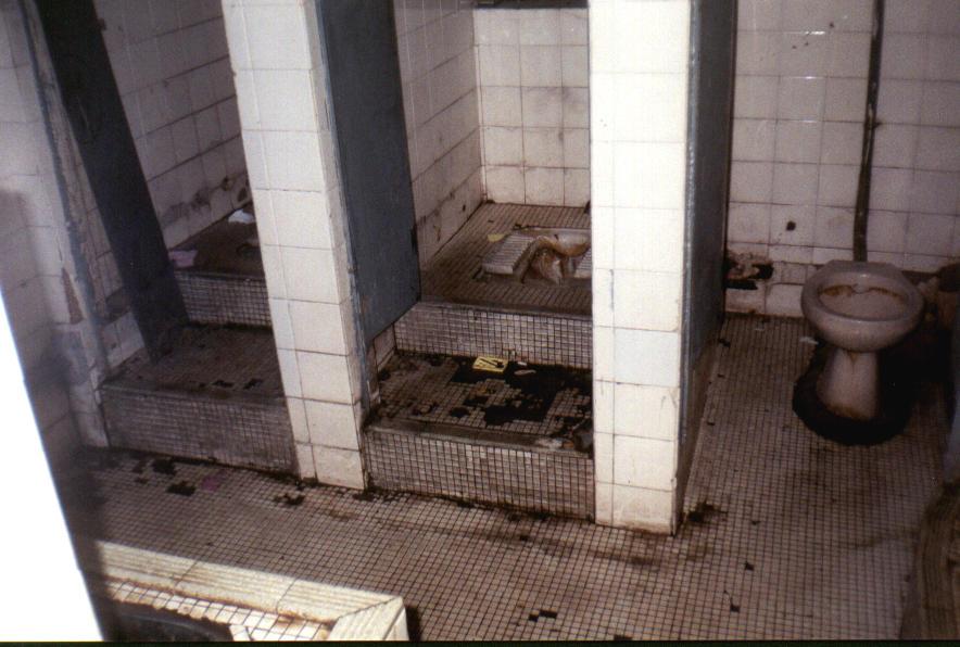 Toilets Around The World Asia Theplumber Com